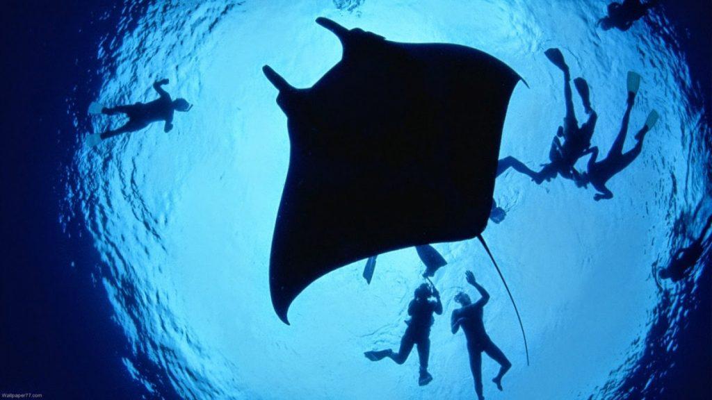 Bali Diving Spots